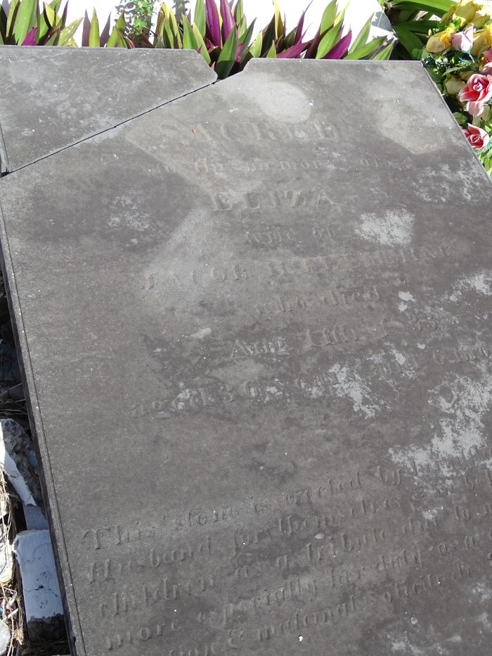 inconnue Eliza epouse de Jacob FLEMMING ??? DC 1833 agee de 36 ans